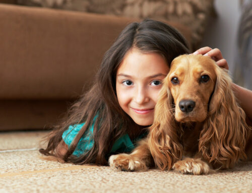 Can Pets Help Children Feel Less Anxious?