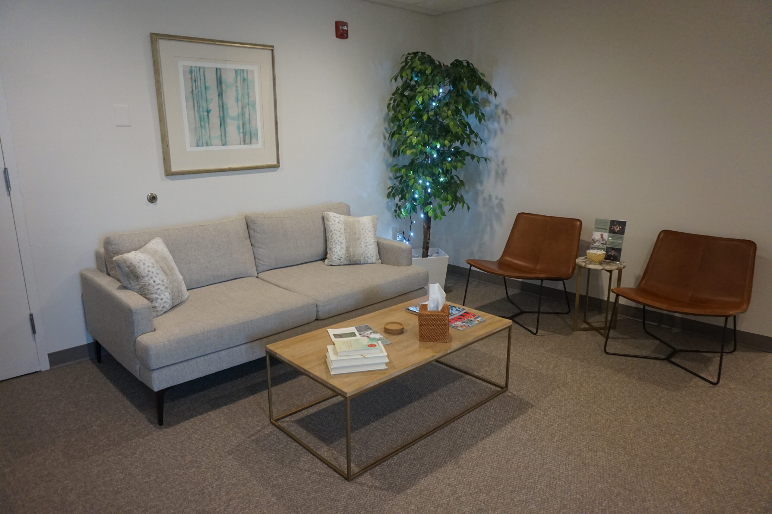 Therapy, Georgetown Psychology, Therapist, Bethesda therapy, adolescent therapy in Bethesda, Adult therapy in Bethesda, Art Therapy Bethesda, Neurofeedback, Neurofeedback Bethesda